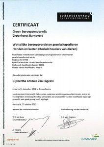 Diploma Bertha Van Engelen